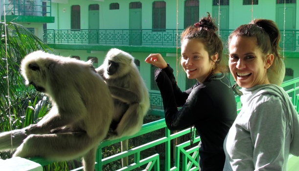 Monkeys! Outside the classroom, with Veronica and I.
